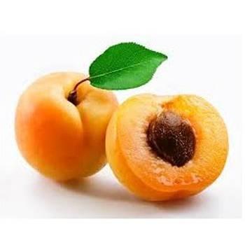 Abricot Solubarôme