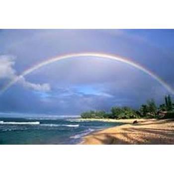 Rainbow Solubarôme