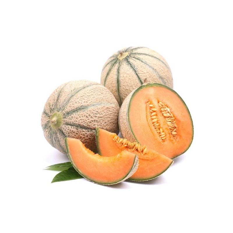 Melon Solubarôme